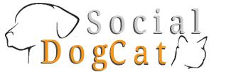 Socialdogcat